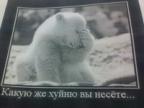 slonoedov аватар